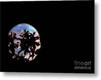 Metal Print featuring the photograph Moon Rising by Leslie Hunziker