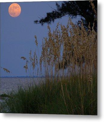 Moon Rising Over Anna Maria Island Metal Print by Rolf Bertram