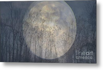 Moon Shadow Metal Print by France Laliberte