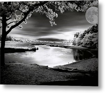 Metal Print featuring the photograph Moona Lagoona by Robert McCubbin