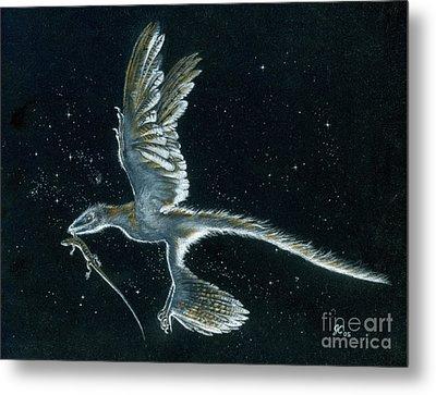 Moonlight Hunt - Microraptor Metal Print