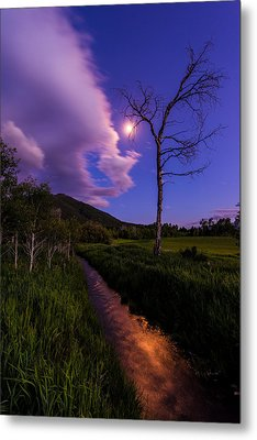 Moonlight Meadow Metal Print by Chad Dutson