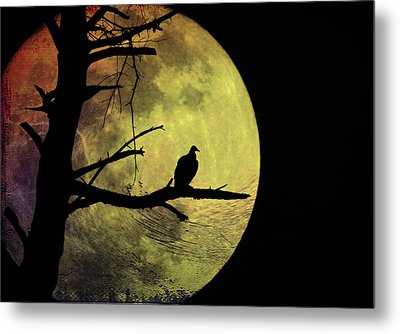 Moonlight Mile Metal Print by Bill Cannon