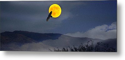 Moonlit Freedom Of Flight Metal Print