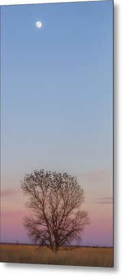 Moonrise Over Blackbirds Metal Print by Rob Graham