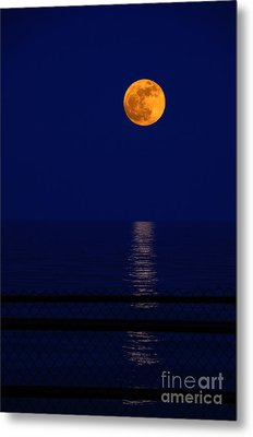 Moonrise Over Water Metal Print by Charline Xia
