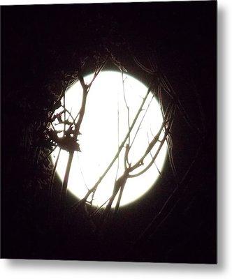 Moonshine 3 Metal Print