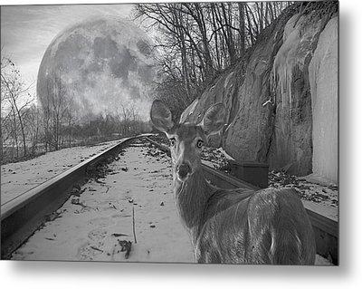 Moonshine Deer Tracks Metal Print by Betsy Knapp
