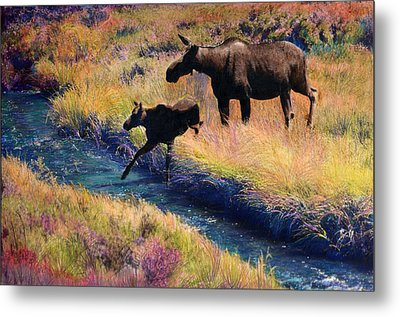 Moose And Calf Metal Print