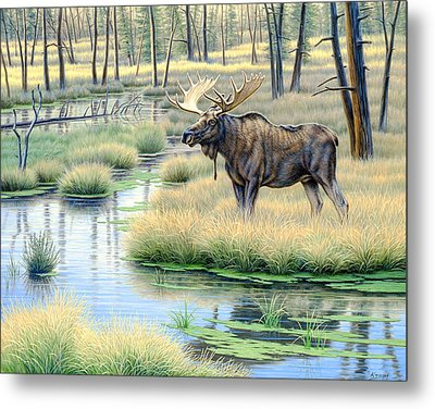 Moose Country Metal Print