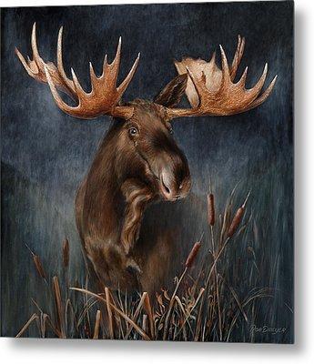 Moose In The Mist Metal Print