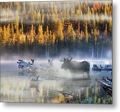 Moose Lake Metal Print by Leland D Howard