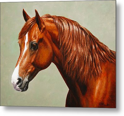Morgan Horse - Flame - Mirrored Metal Print by Crista Forest