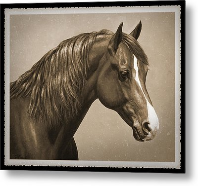 Morgan Horse Old Photo Fx Metal Print by Crista Forest
