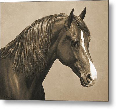 Morgan Horse Painting In Sepia Metal Print by Crista Forest