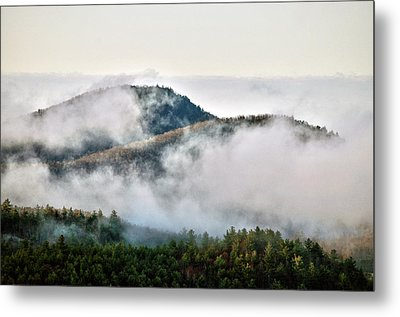 Metal Print featuring the photograph Morning After The Storm by Allen Carroll