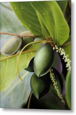 Metal Print featuring the pastel Morning Almonds Pastel by Ben Kotyuk