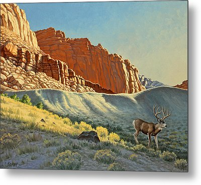 Morning At Capitol Reef Metal Print