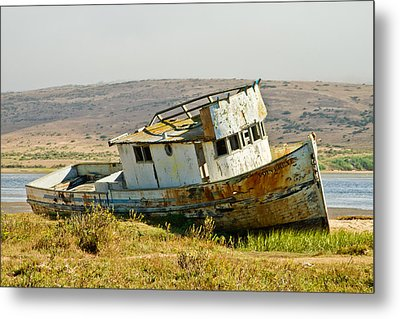 Morning At The Pt Reyes Metal Print by Bill Gallagher