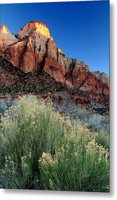 Morning At Zion National Park Metal Print by Eric Foltz