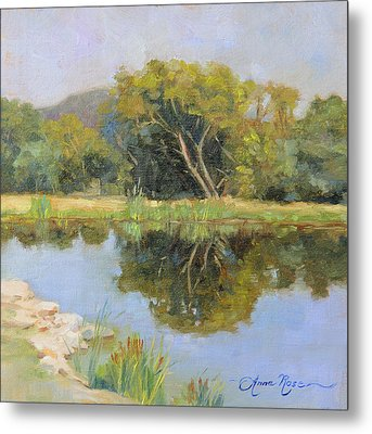 Morning Calm In Texas Summer Metal Print by Anna Rose Bain