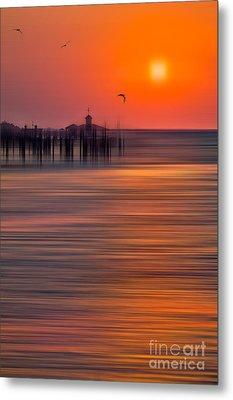 Morning Flight - A Tranquil Moments Landscape Metal Print