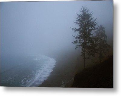 Morning Fog At Agate Beach Metal Print by Robert Woodward