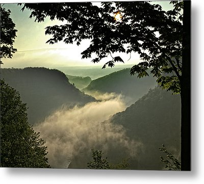 Morning Fog Metal Print by Richard Engelbrecht