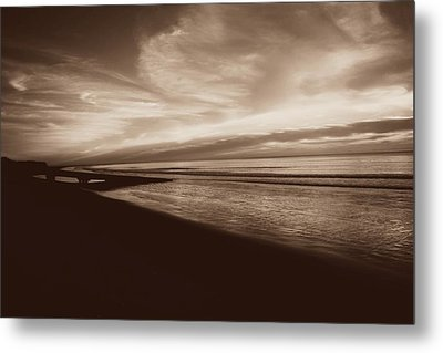 Morning Glory Metal Print by Debbie Howden