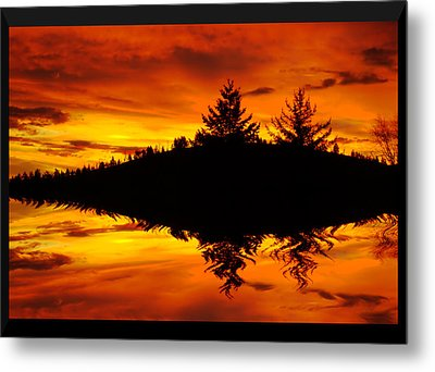 Morning Glory Metal Print by Kevin Bone