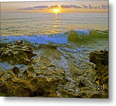 Metal Print featuring the photograph Morning Glory by Larry Nieland