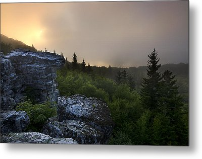 Morning Glow Metal Print by Michael Donahue