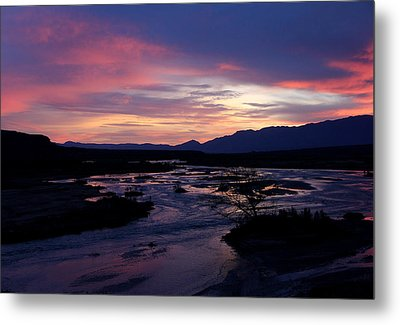 Metal Print featuring the photograph Morning Glow by Tammy Espino