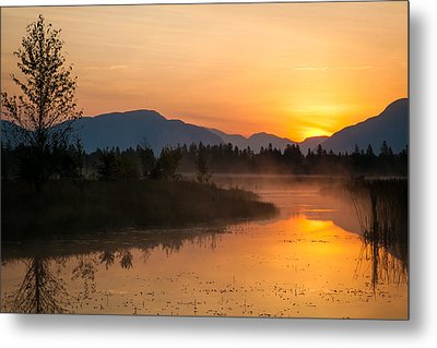 Metal Print featuring the photograph Morning Has Broken by Jack Bell
