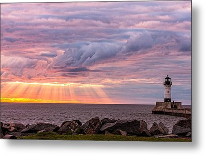 Morning Has Broken Metal Print by Mary Amerman