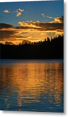 Morning Has Broken Metal Print by Sherri Meyer