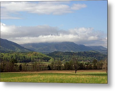 Morning In Cades Cove Metal Print by Roger Potts