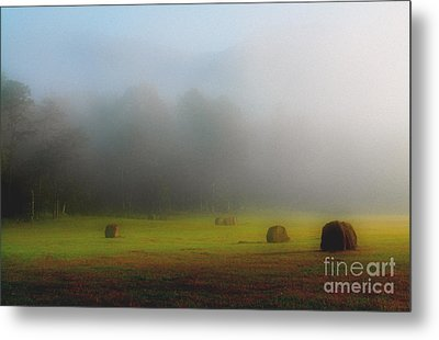 Morning In The Cove Metal Print