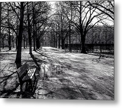 Metal Print featuring the photograph Morning In The Hofgarten by Ross Henton