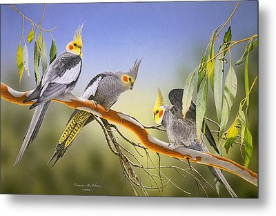 Morning Light - Cockatiels Metal Print by Frances McMahon
