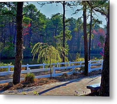 Morning Light Metal Print by Rick Todaro