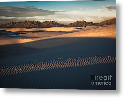 Morning Light Metal Print by Sherry Davis