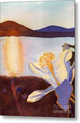 Morning Mesa Columbine Metal Print by Vikki Wicks