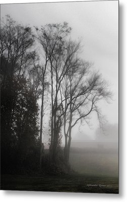 Morning Mist Metal Print by Aleksander Rotner