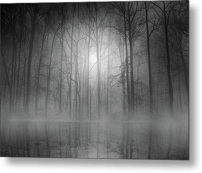 Morning Mist Metal Print