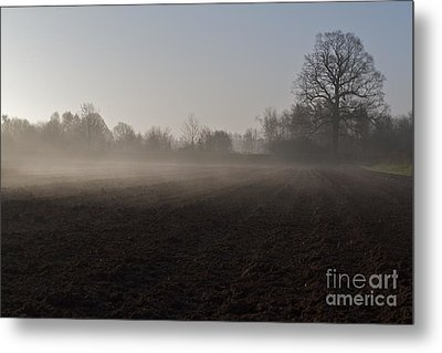 Metal Print featuring the photograph Morning Mist  by Gary Bridger