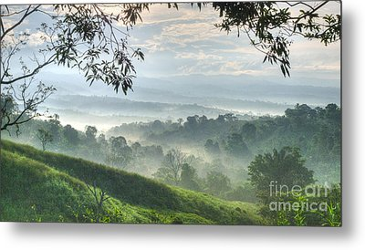 Morning Mist Metal Print by Heiko Koehrer-Wagner