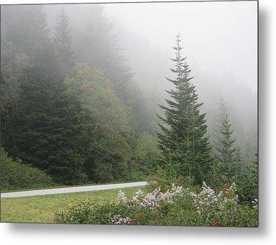 Morning Mist Metal Print by Kathy Long