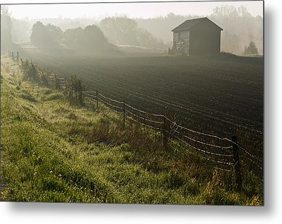 Morning Mist Over Field And Metal Print by Jim Craigmyle