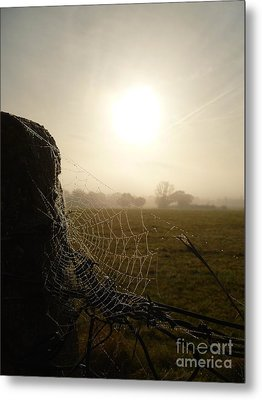 Morning Mist Metal Print by Vicki Spindler